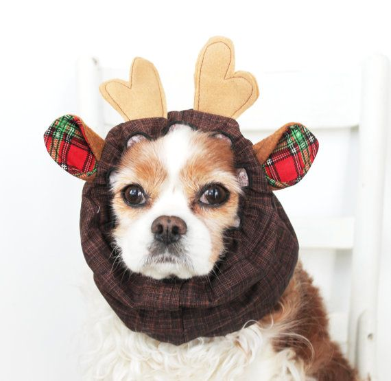 Pets Etsy Home Living Pet Holiday Dog Snood Christmas Pet
