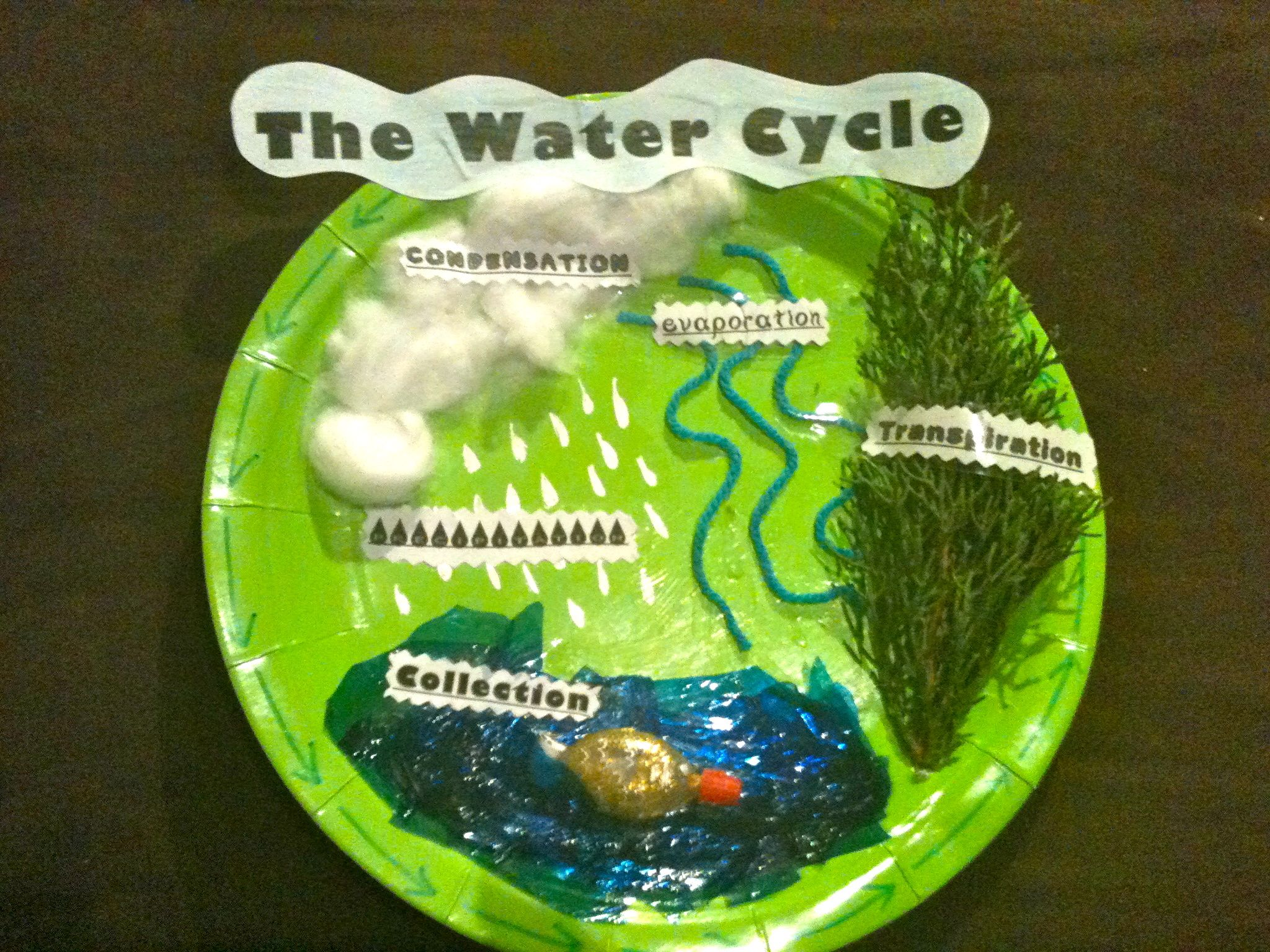 What is water and what is the water cycle?