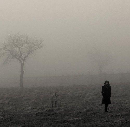black,and,white,misty,photography,solitude,tree,woman-87e2fbb16726035fe885752466667b98_h.jpg (500×491)