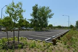 Image result for SUPERMARKET PARKING BAYS TREES