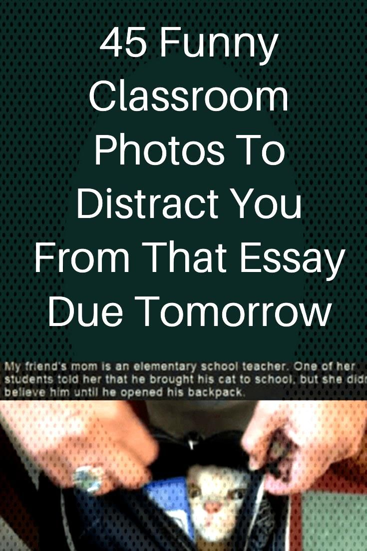 45 Funny Classroom Photos To Distract You From That Essay Due Tomorrow 45 Funny Classroom Photos To