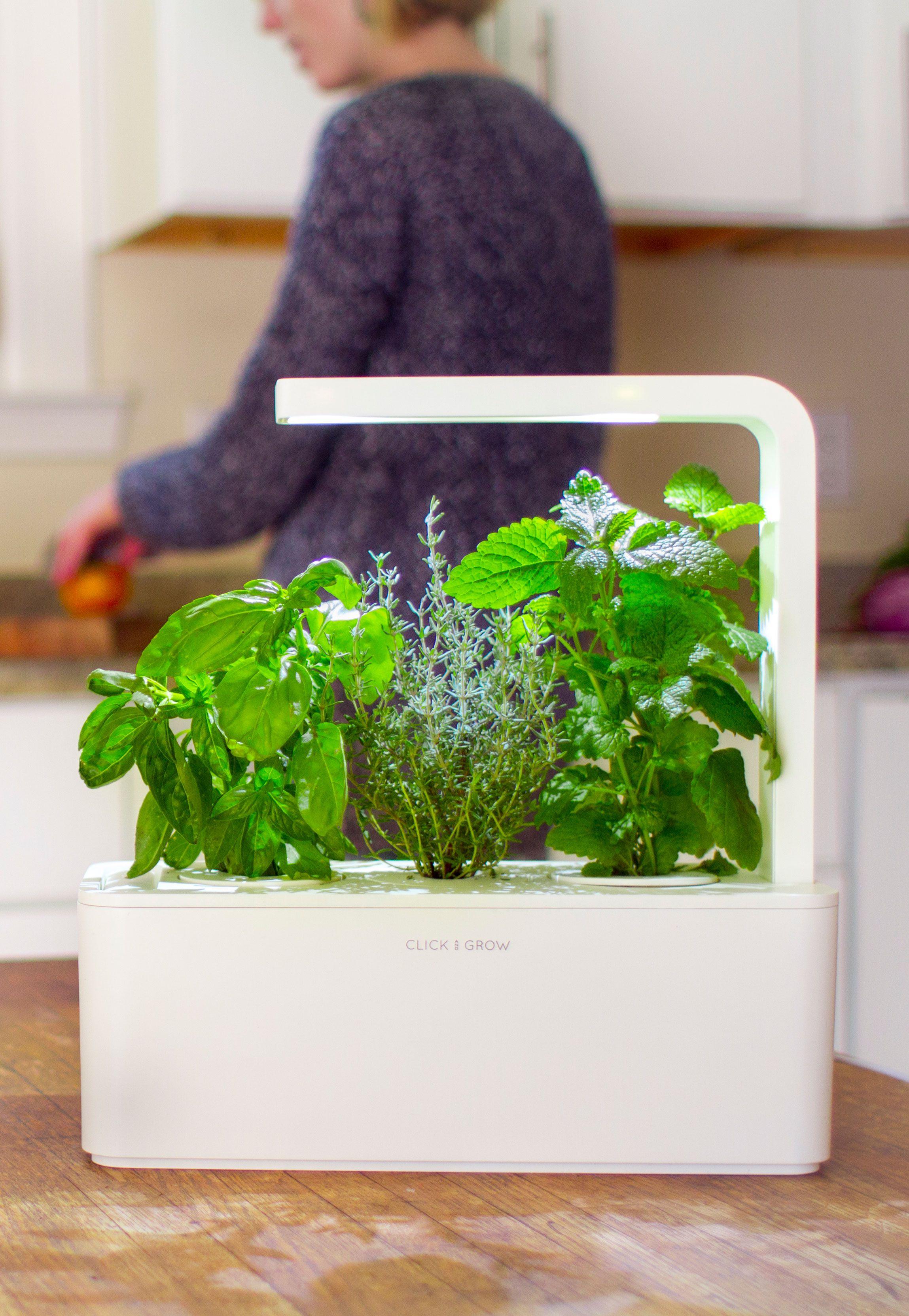 The Smart Garden 3 Con Imágenes Jardines Macetas Plantas 400 x 300
