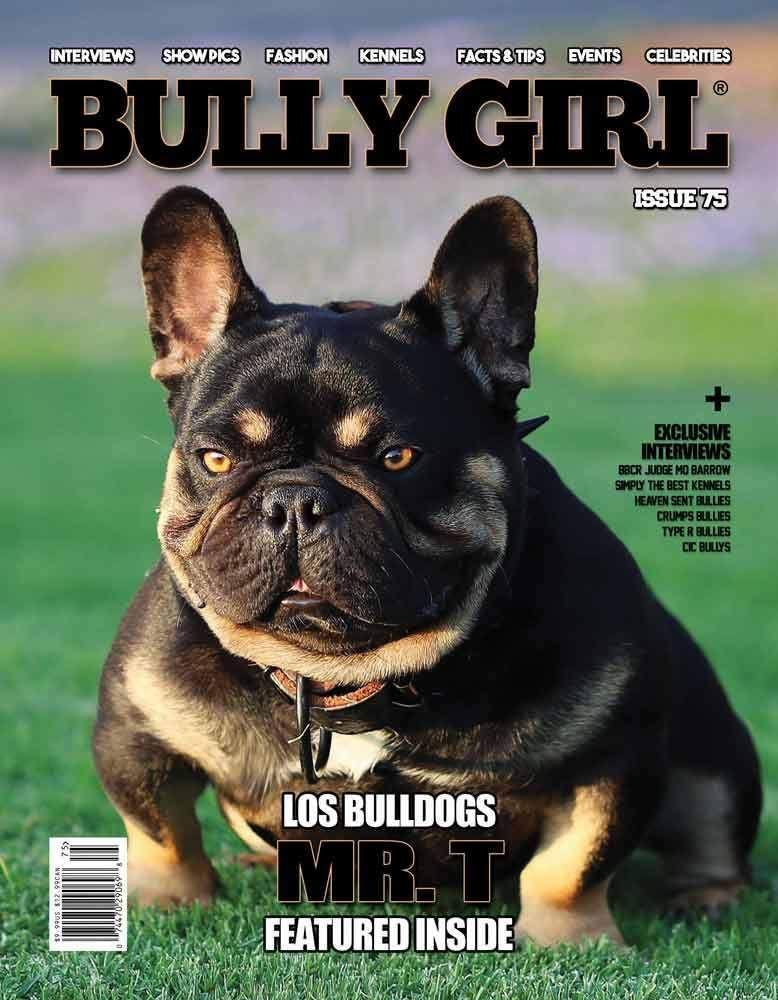 Bully Girl Magazine Issue 75 Girls Magazine Bullying French