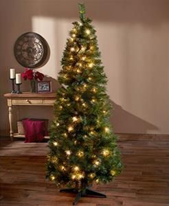 6 ft pre lit pop up christmas trees clear lights - 6 Ft Lighted Christmas Tree