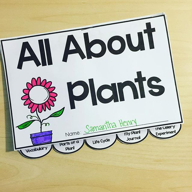 A great resource to include with your unit on Plants  There are six different sections: Vocab, Parts of a Plant, Life Cycle, a Plant Journal for recording observations of plant growth, and a section for conducting the Celery Experiment.