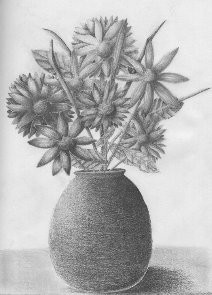 Pencil drawing of flower vase with flowers vase of flowers drawing