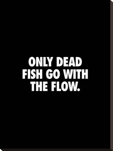 'Only Dead Fish Go With the Flow' Stretched Canvas Print - Brett Wilson   Art.com