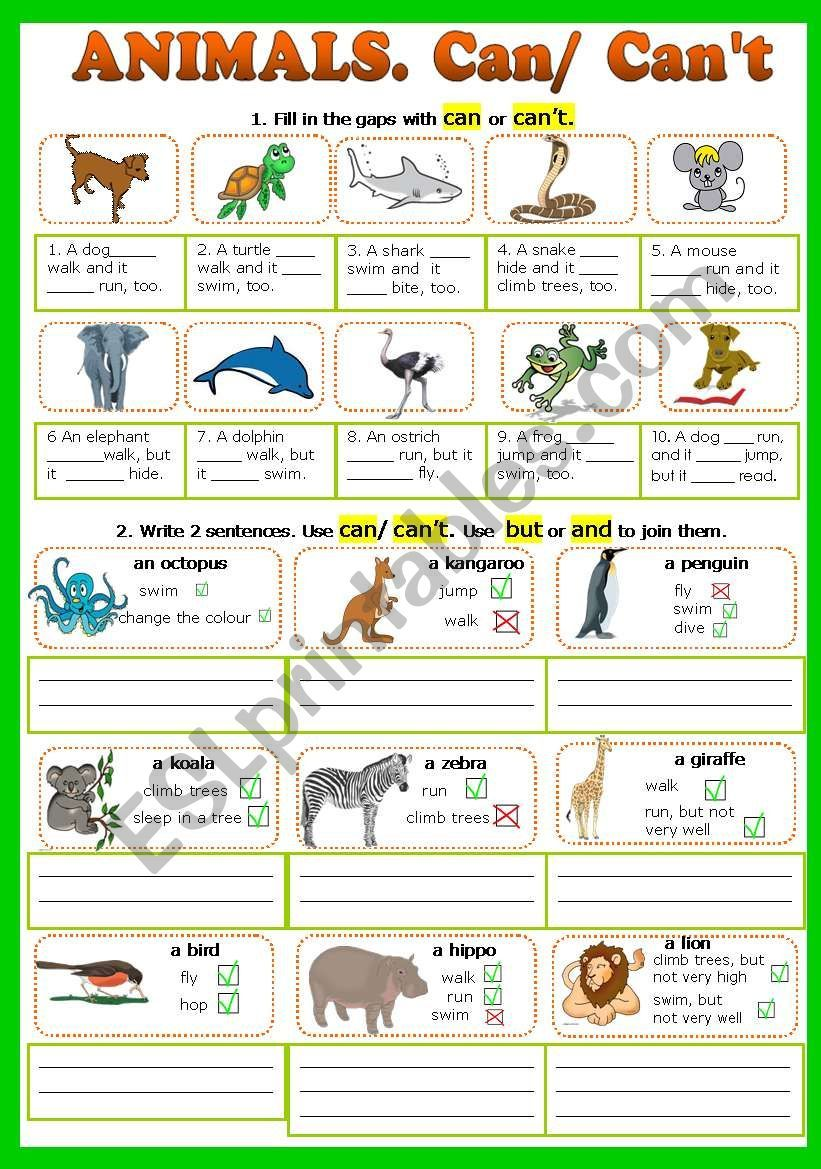 A worksheet to revise the modal can/can´t, animals, action