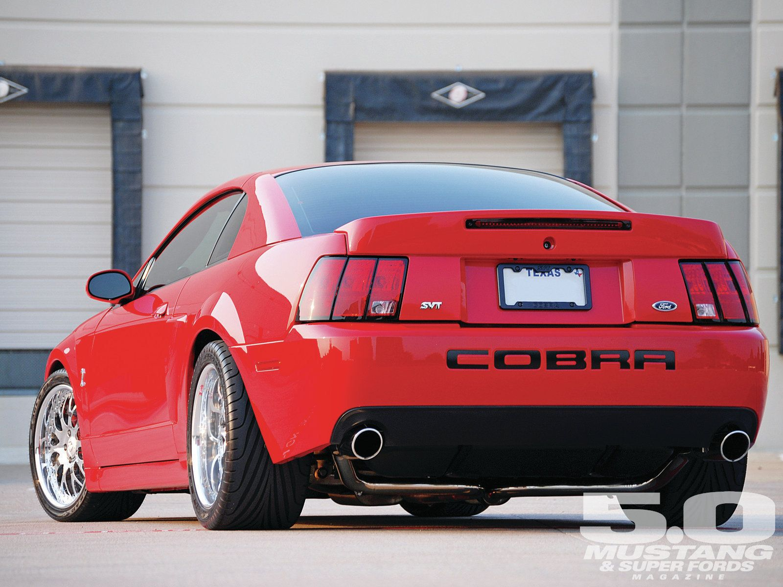 Mean And Clean Looking 2004 Ford Cobra Mustang Terminator Mustang Cobra Ford Mustang Cobra Mustang