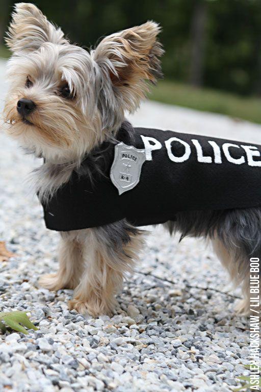 Diy Police Costume And K 9 Dog Halloween Costume Dog Halloween