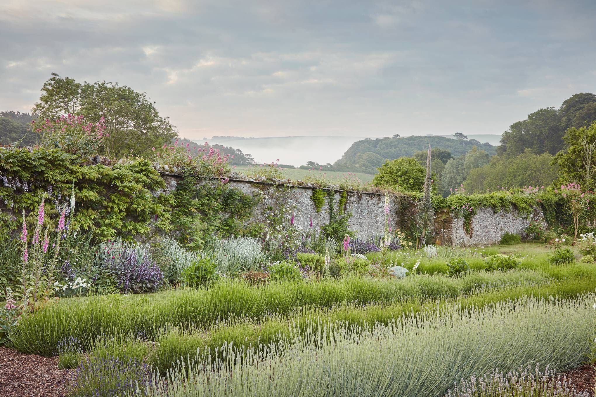 In A Hidden Corner Of Devon, A Valley Garden Sloping