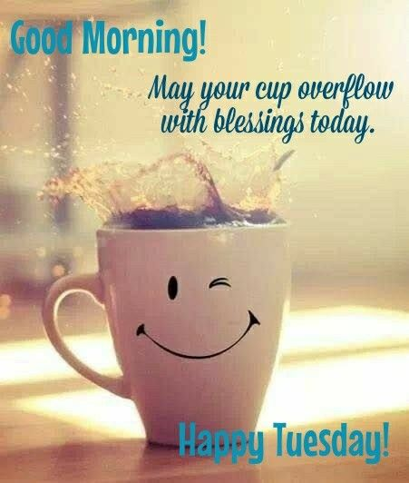 good morning happy tuesday have a nice tuesday