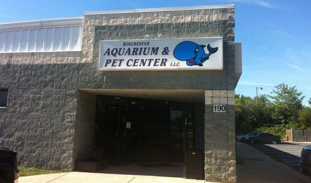 I M Here Every Week Small Pets Pets Aquarium
