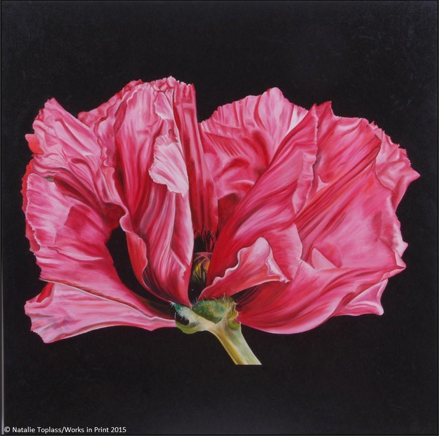 'Poppy' by ARTIQ artist, Natalie Toplass http://bit.ly/1OE1Ou7