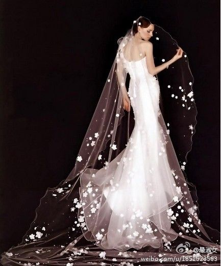 Beautiful silouette, and an ingenious veil... just make you sigh ...
