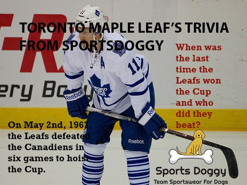 Toronto Mapleleafs Trivia From Http Sportsdoggy Com Doggy Bloggy Http Rite Ly Kf3o Hockey Game Team Icehockey Today Sports Team Sportswear Sports