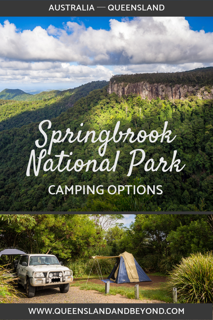 Springbrook National Park: Camping Review | Adventure