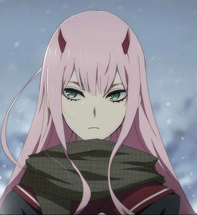 ZeroTwo until S2 comes out😪😪(Day 24)