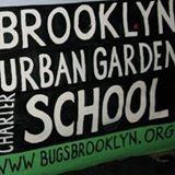 Quiet Time at the Brooklyn Urban Garden School