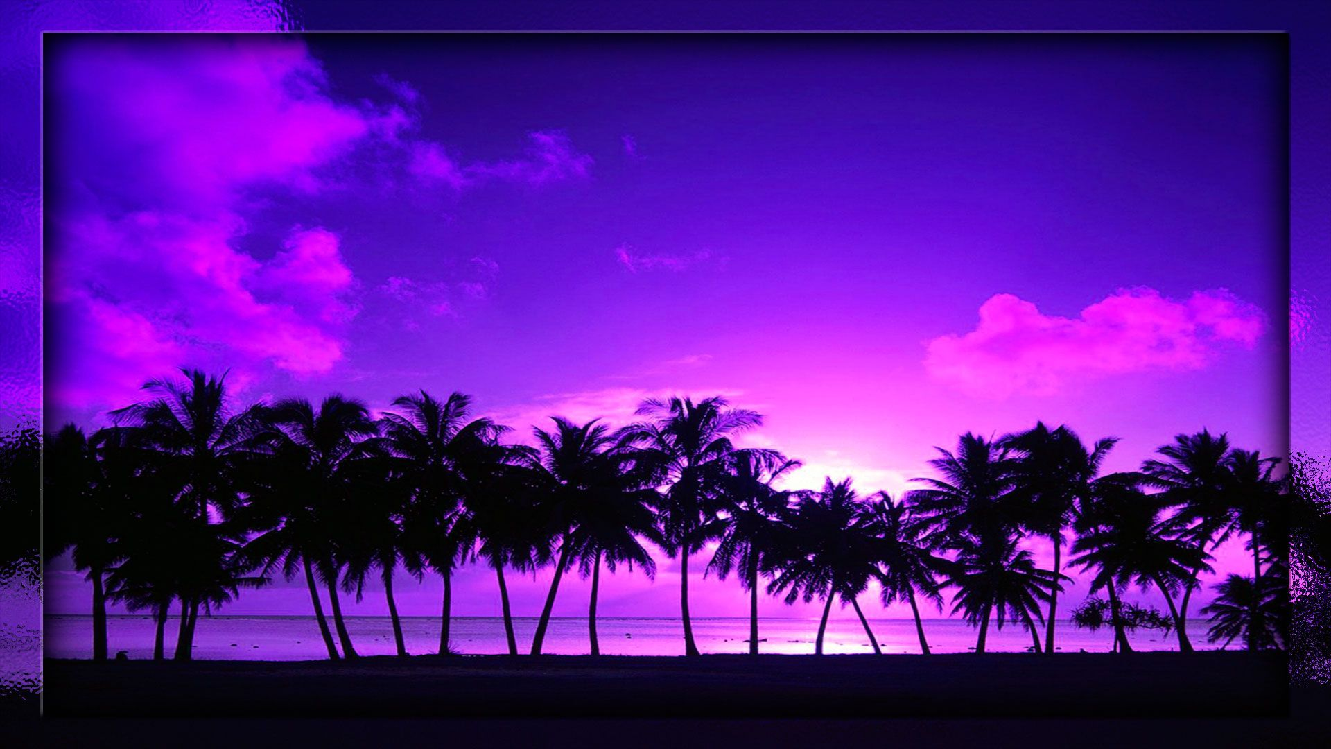 beach sunset palm tree wallpaper projects to try pinterest