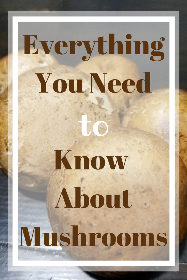 Everything You Need to Know About Mushrooms