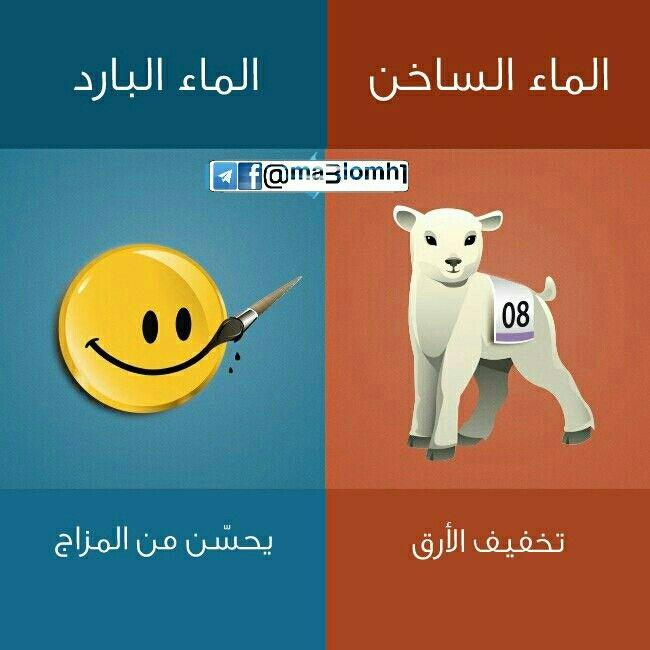 الفرق