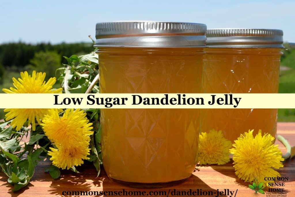 Dandelion Jelly Easy Flower Jelly Recipe With Less Sugar Recipe Dandelion Jelly Jelly Recipes Dandelion Recipes