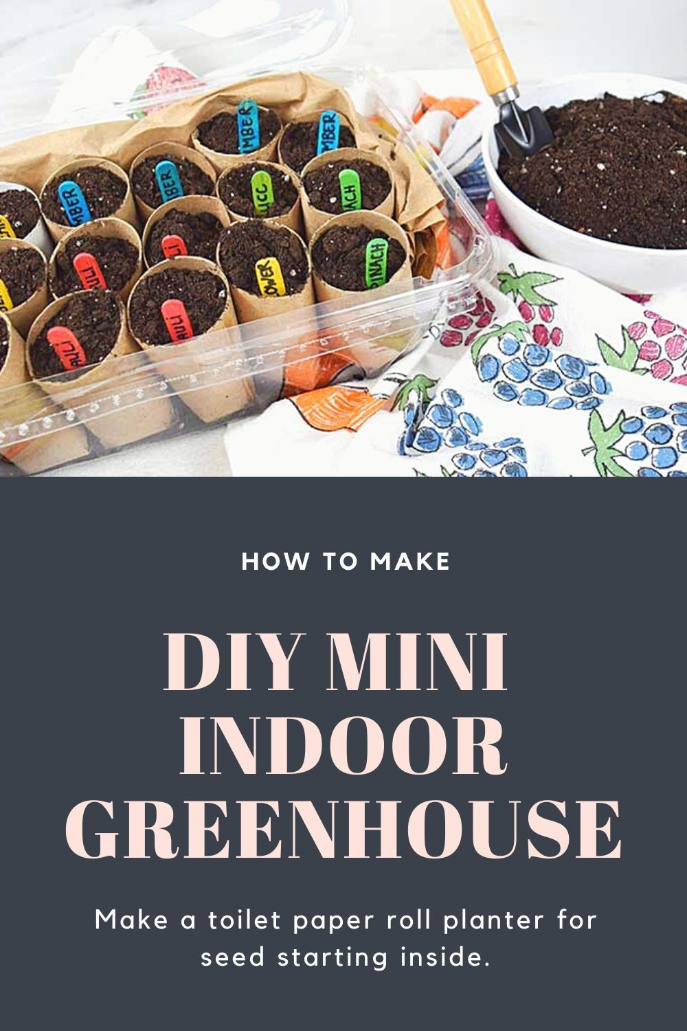 How to make diy mini indoor greenhouse to start seeds