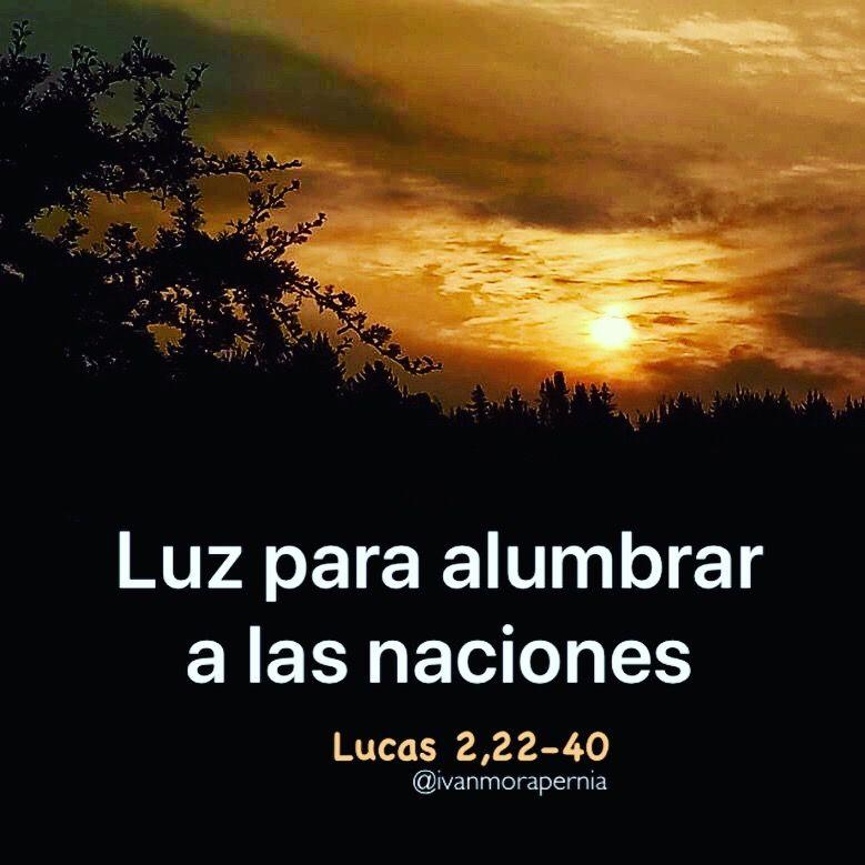 Lucas 2 22 40 Luz Para Alumbrar A Las Naciones Biblia Católica Palabra De Vida Sagrada Escritura
