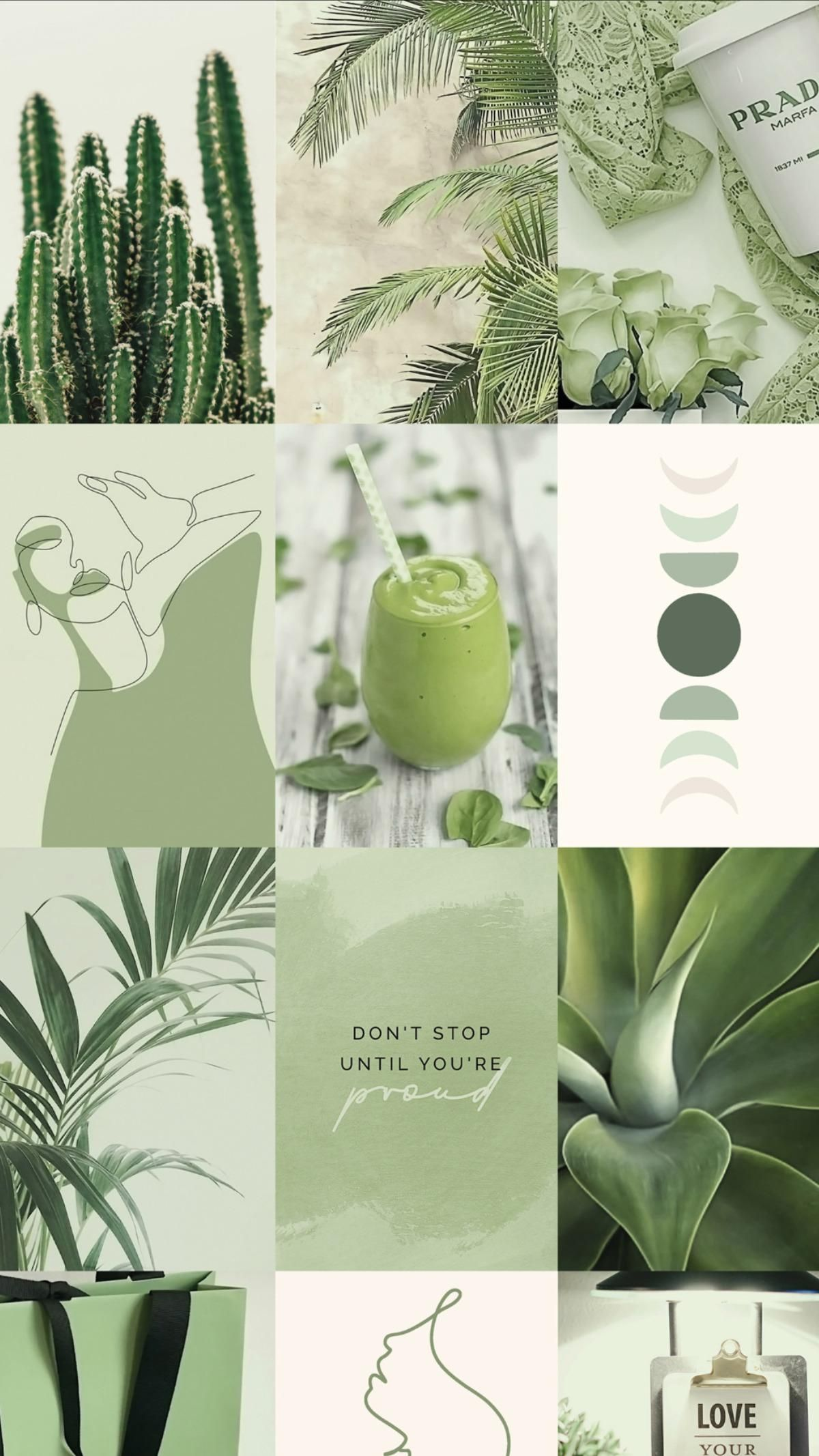 Spice up your room with this soft sage green wall collage kit!