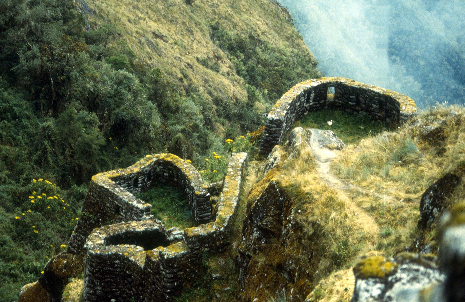 How about hiking the Inca Trail?