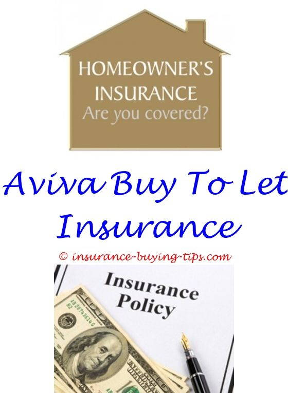 Homeowners Insurance Quote Impressive Car Insurance Quotes  Buy Health Insurance Design Inspiration