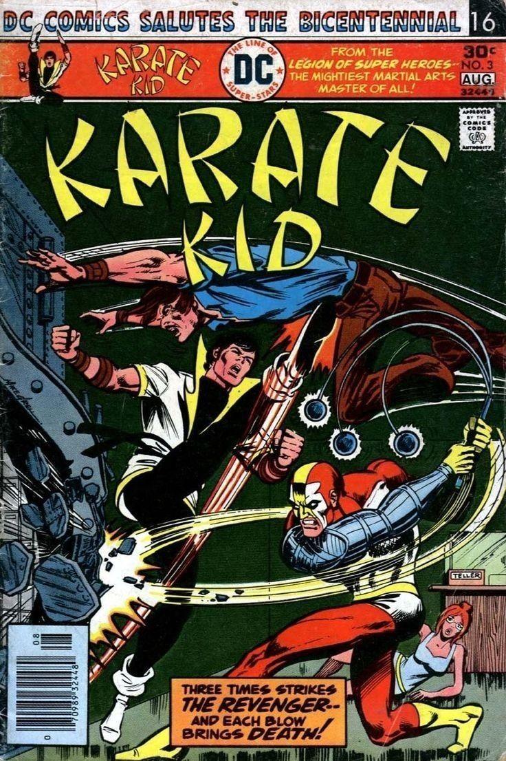 48+ Karate kid book online information
