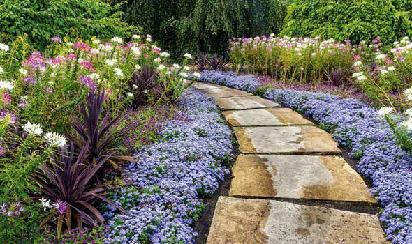 NOW is the perfect time of year to transform your patch by building a path, says Alan.