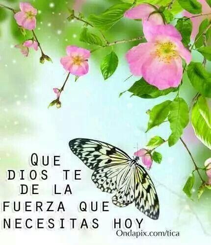 Confia en Dios.