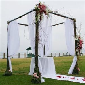 Wedding Arches Google Search Wedding Canopy Chuppah Wedding Arch