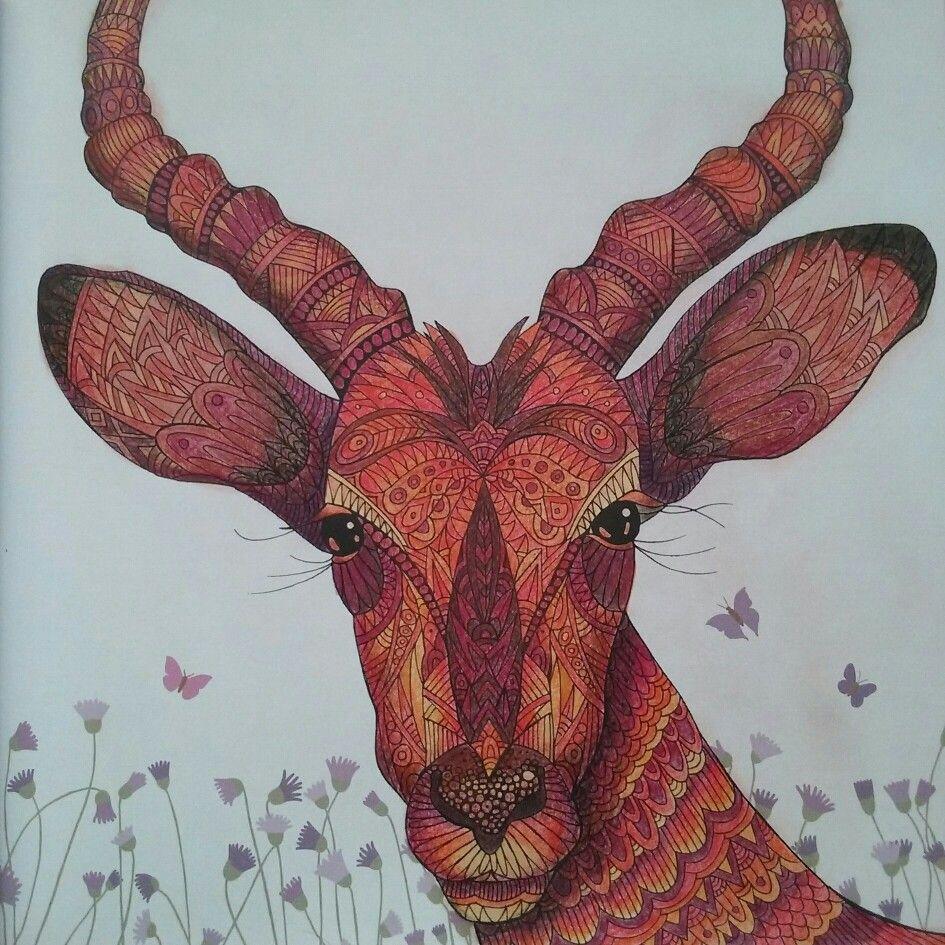 Impala The Menagerie Colouring Book Animal Coloring Books Millie Marotta Coloring Book Coloring Book Art