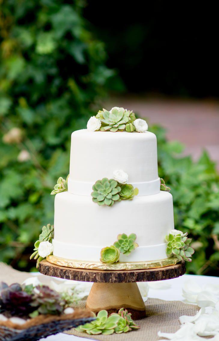 Succulent Topped Fondant Wedding Cake | Photo: Megan Moura Photography