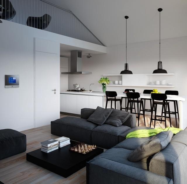 Mezzanine moderne avec salon salle à manger et cuisine graphiques