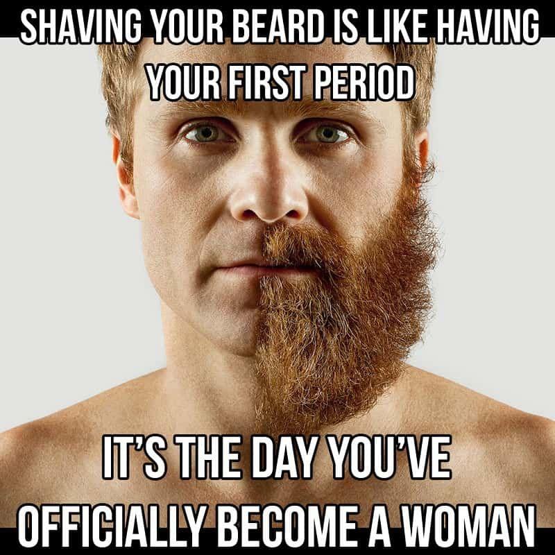 Beard Meme 9 50 Funny Beard Memes That Ll Definitely Make You Laugh Beard Memes Beard Humor Funny Beard Memes