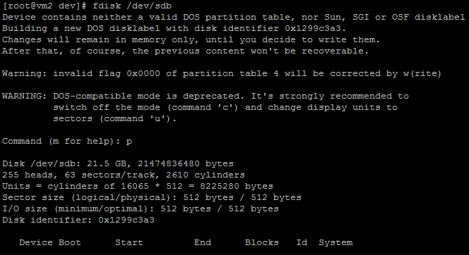 Partitioning A New Disk Using Fdisk Disk Partition Linux