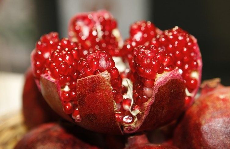 Can Cats Eat Pomegranate? in 2020 Cancer fighting