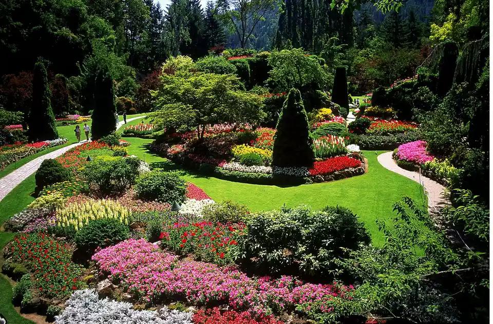 The Landscape Design Principles Do It Yourselfers Need To Know Landscape Design Backyard Landscaping Garden Design