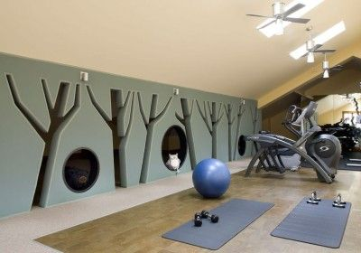 47 extraordinary basement home gym design ideas  gym room