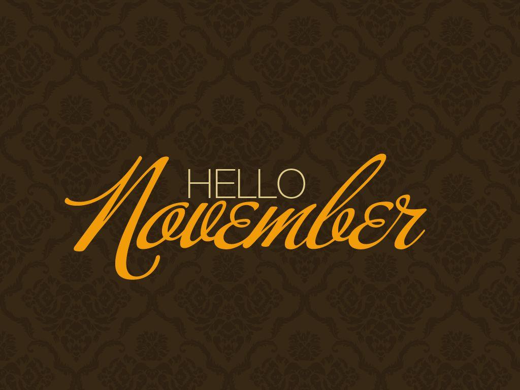 Hello November • Studio 404