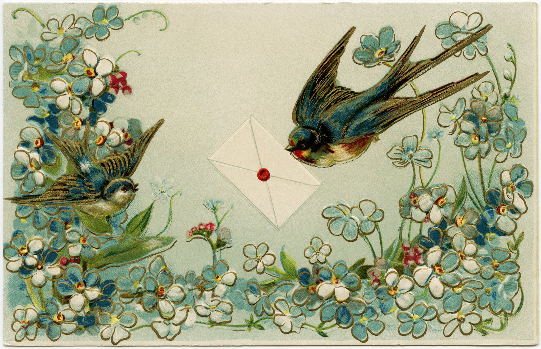 Vintage Birds And Flowers Postcard Free Download Old Design