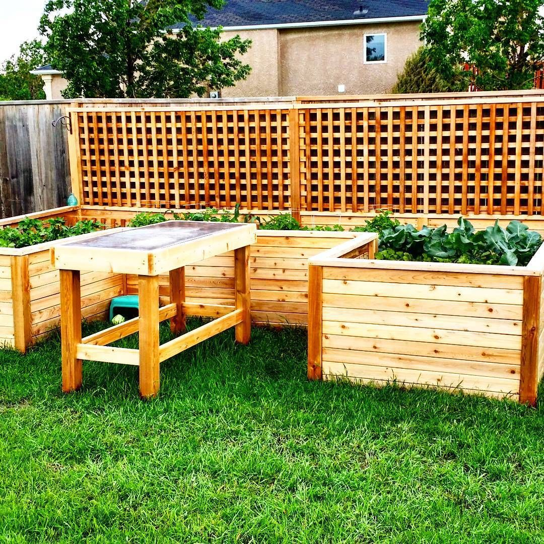 5 Easy DIY Raised Garden Bed Ideas and Plans | Raised ...