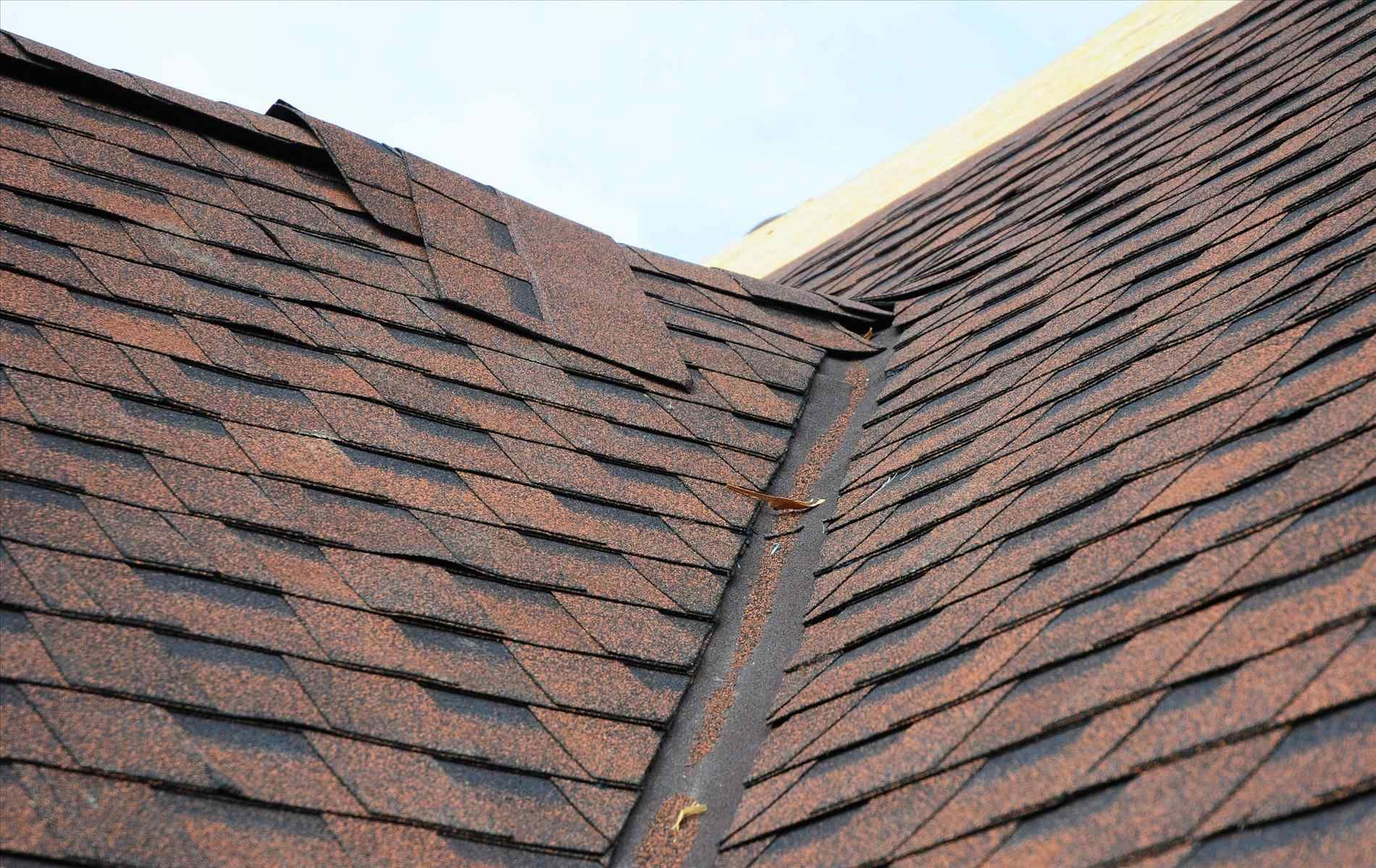 When To Replace Roof Shingles Replace Roof Shingles Fibreglass Roof Roof Repair