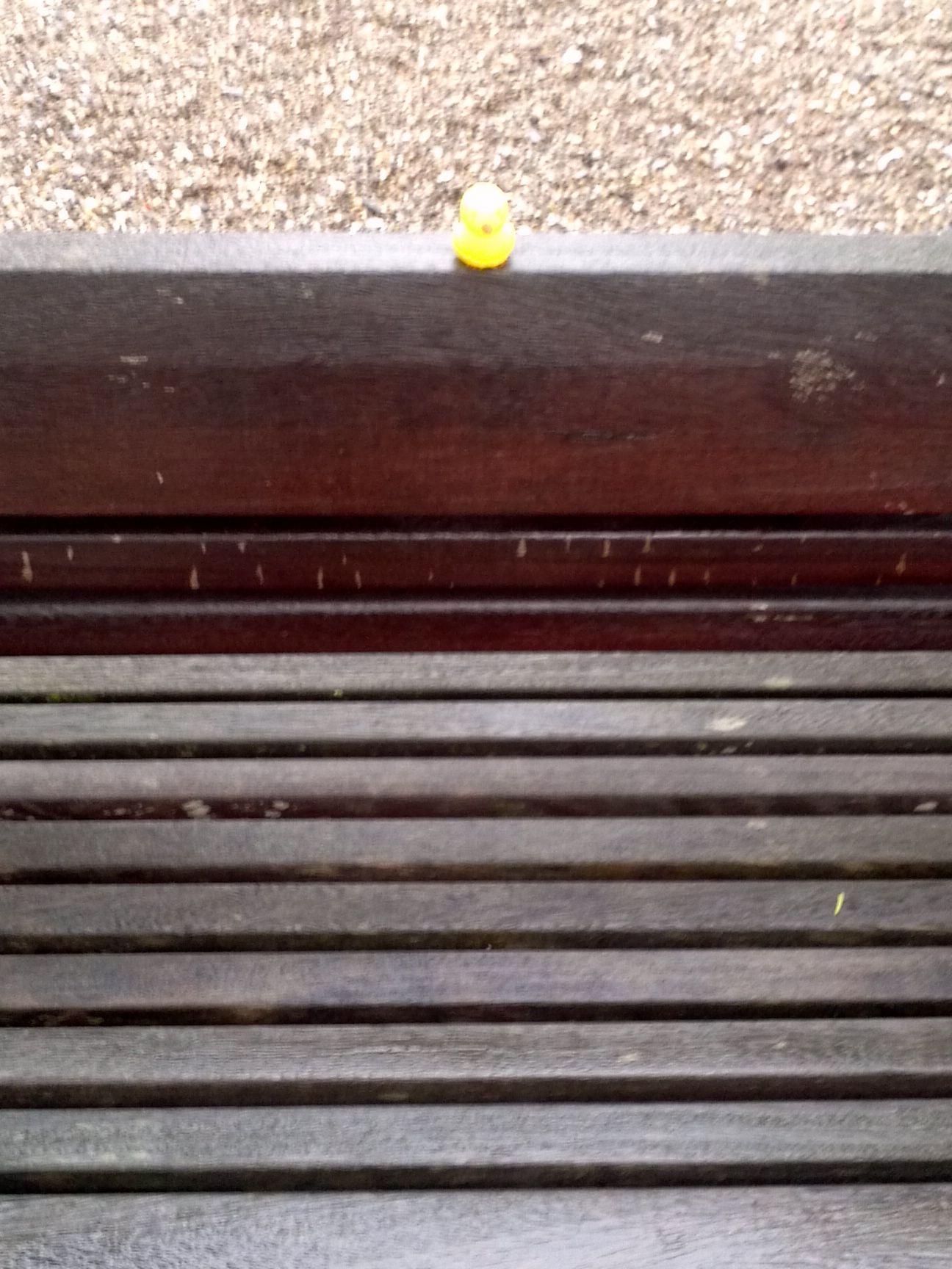 Parkbank. Kalt & regnerisch.