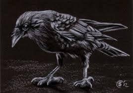 Download Image result for corbeau art   Black bird, Halloween coloring, Crow art